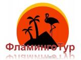 Логотип ИП Фламинго Тур