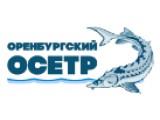 Логотип Оренбургский Осётр